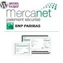 Module BNP Paribas - Mercanet pour WooCommerce Wordpress (Officiel)
