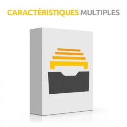 Caractéristiques multiples Prestashop 1.7