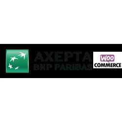 Axepta WooCommerce