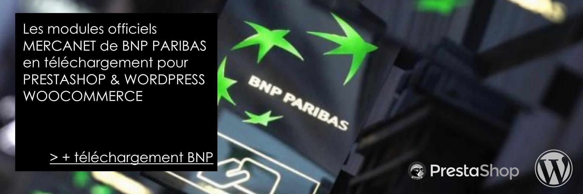 Payment Module BNP MERCANET